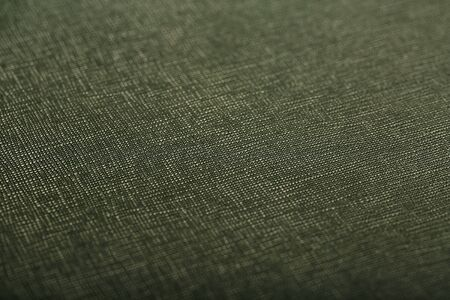 Green skin texture close up as background. In full screen. The material for the manufacture of leather goods