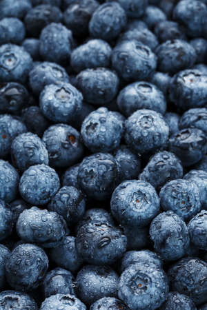 Ripe blueberries in the form of a full-screen texture with drops of dew.