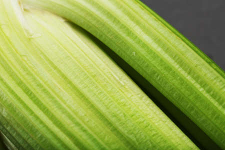 Fresh celery stalks on a black textured background. The concept of healthy vegetarian food.