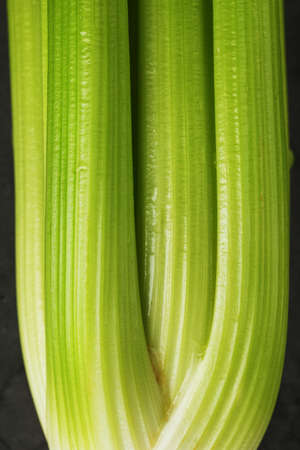 Fresh celery stalks close-up as a full-screen texture. The concept of healthy vegetarian food.
