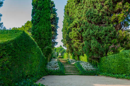 прекрасный вид на Средиземноморском парке с яркой зелени Фото со стока - 75675066