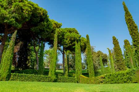 прекрасный вид на Средиземноморском парке с яркой зелени Фото со стока - 75675068