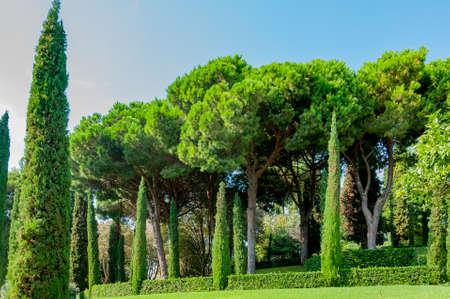 прекрасный вид на Средиземноморском парке с яркой зелени Фото со стока - 75675064
