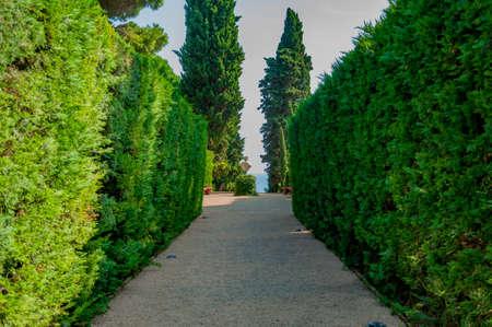 прекрасный вид на Средиземноморском парке с яркой зелени Фото со стока - 75675059
