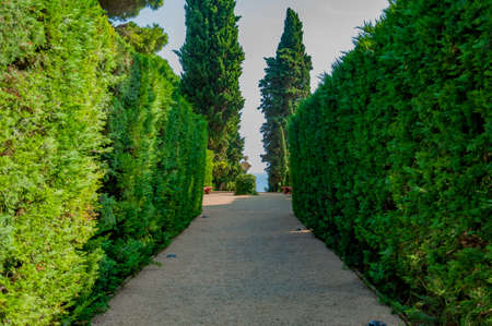 beautiful view of the mediterranian park with bright greenery Stock Photo