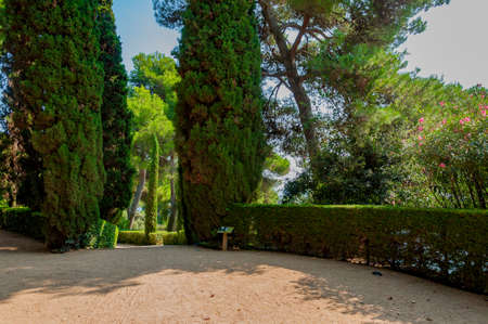 walkway in the mediterranian park with bright greenery Stock Photo