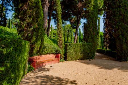 дорожки и скамейки в парке Средиземноморского с яркой зелени