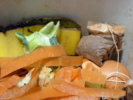composting: Collecting Biodegradeable Food scraps in a kitchen waste bin for composting.
