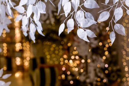 nature background white decorative leaves on a beautiful bokeh background with place for text