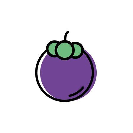 Mangosteen icon vector flat design illustration Illustration