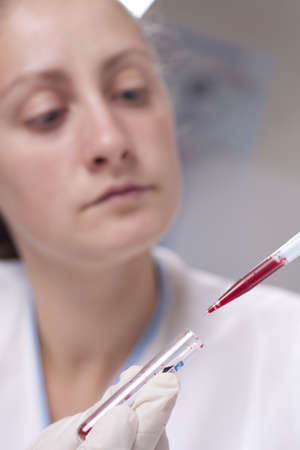 Woman taking sample from test tube with micro pipette Stock Photo - 14054585