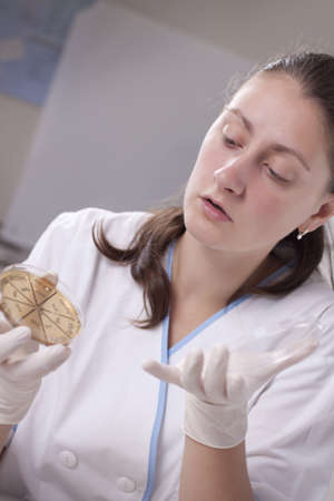 Lab scientist doing research on petri dish Stock Photo - 14121793