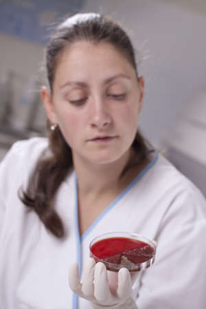 Lab scientist doing research on petri dish Stock Photo - 14121740