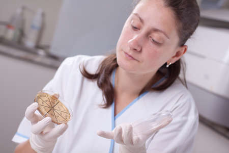 Lab scientist doing research on petri dish photo