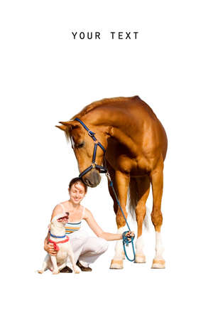 Chestnut horse, young girl and dog isolated on white background 写真素材