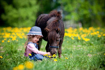 domestic horses: Child and small horse in the field at spring.