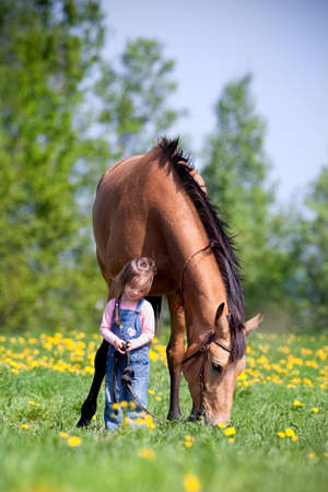 Child and big horse standing in the field at spring.