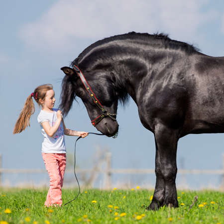 farm girl: Child and black horse in pasture  Stock Photo