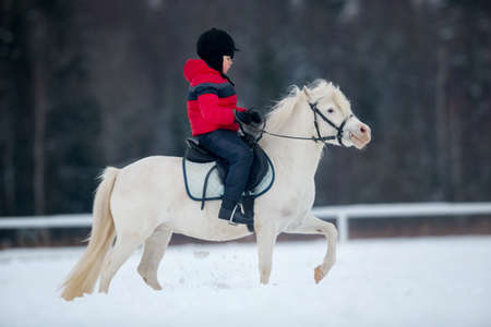 pony: Small boy with a pony in winter - horse riding