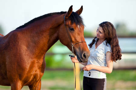 Young girl and bay horse outdoor photo