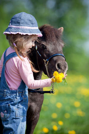 Child feeding a small horse in field photo