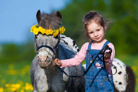 Child and small horse in field photo