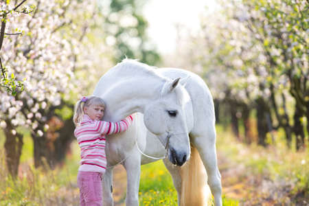 Small child with a white horse in apple orchard at sunset