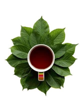 arbol de cafe: composición en plano con una taza de? té y hojas verdes