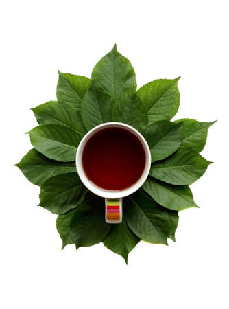 flat lay composition with cup of ? tea and green leaves Standard-Bild