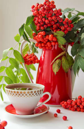 rowanberry: autumn still life with rowan in red vintage vase and a cup of tea or coffee