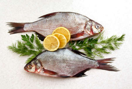 Two raw fresh fishes on marble table with lemon, dill and parsley. Crucian fishes. top view, flat lay.