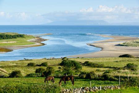 sligo: Beautiful landscape with horses in County Sligo, Ireland Stock Photo