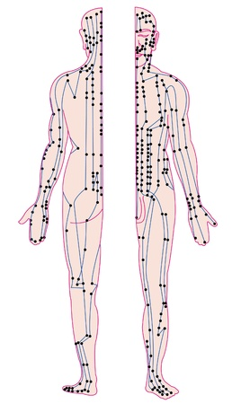 acupoint of human body