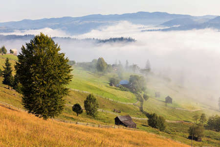 misterious: Summer sunrise landscape in Bucovina, Romania