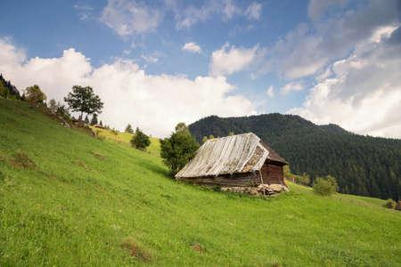 Summer landscape at  Moieciu - Bran, Romania