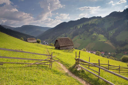 Summer landscape at  Moieciu - Bran, Romania