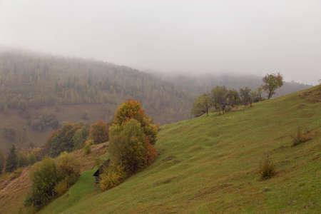 Autumn landscape in the Carpathian Mountains, at Bran - Romania