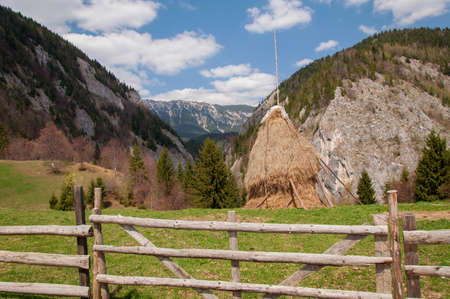 Summer landscape in the transylvanian hills, at Bran, Romania 版權商用圖片