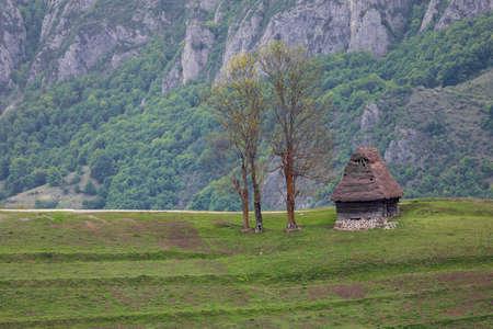 carpathians: Beautiful landscape in Apuseni, Romania
