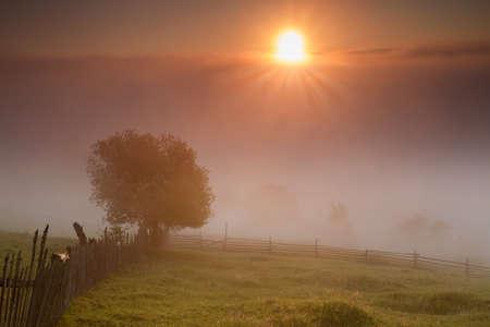 Summer sunrise landscape in Bucovina, Romania