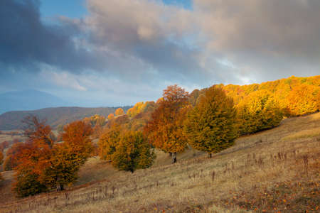 Beautiful autumn landscape in Transylvania Imagens