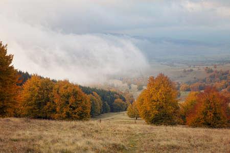 Beautiful autumn landscape in Transylvania 版權商用圖片