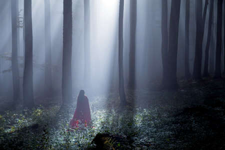 Red Riding Hood portrait in the autumn foggy forest Archivio Fotografico