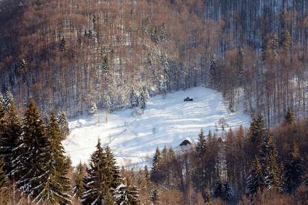 랜에서 서리가 내린 숲의 겨울 풍경