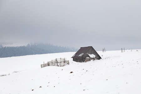 Rural landscape of the romanian sheepfold, at Sibiu county Фото со стока - 98717691