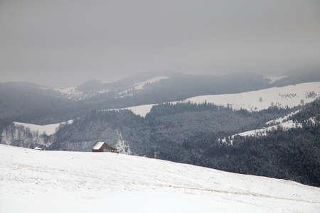 シビウ郡のルーマニアの羊飼いの田園風景