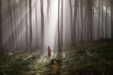 Red Riding Hood portrait in the autumn foggy forest Zdjęcie Seryjne