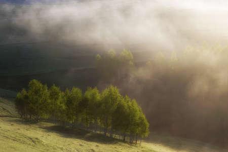 Foggy summer sunrise in Transylvania 写真素材