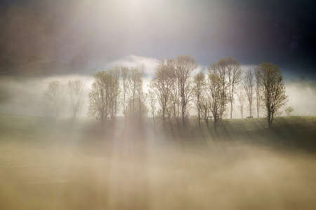 Foggy summer sunrise in Transylvania Banco de Imagens