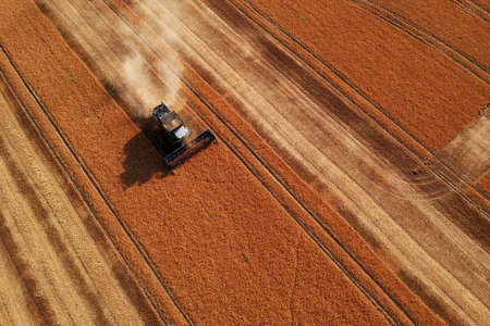 Summer view of combine harvester machine, in the romanian fields. Aerial view of harvesters Stockfoto